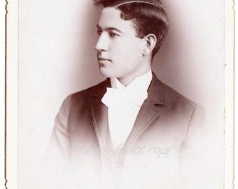 Handsome Victorian Hairstyle