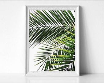 Palm Leaf Print, Tropical Leaf Print, Printable Palm Leaf, Palm Art Print, Palm Tree Art, Beach Decor, Minimalist Art, Modern Wall Print