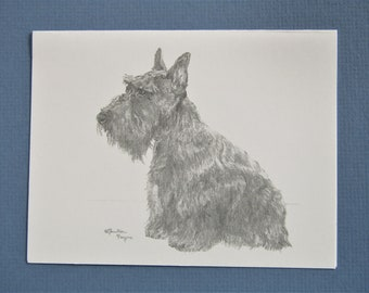 Scottie note cards, set of 6 cards plus envelopes, direct from artist