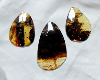 Lot 3 pendants drilled amber from Mexico - Mineral set