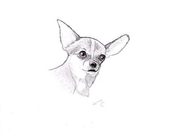 Custom Pet Portrait  Drawing from photo One subject portrait