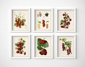 Kitchen wall art set, Set of 6 prints, Digital download, Berry art vintage, Currant print, Strawberry print, Gooseberry print, Cherry print