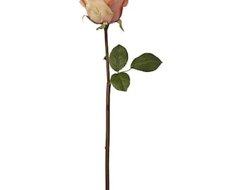 Faux Flora Blush Peachy Rose 40cm