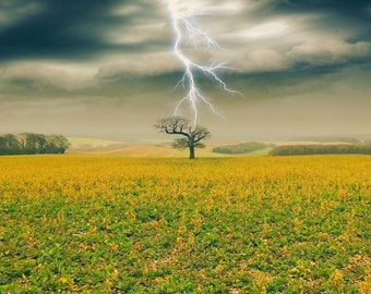 Surreal atmospheric landscape with a single tree struck by lightning.