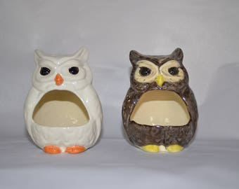 Owl Scrubby Holder, Owl Ring Dish, Owl Catch All, Planter, or Incense Burner ~ Brown or White ~