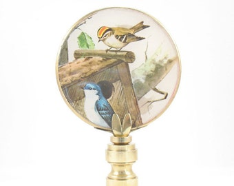 Lamp Finial Two Little Birds Looking at a Birdhouse Decoupage on Brass 19B
