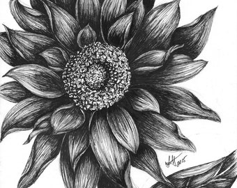 Sunflower - ORIGINAL Drawing