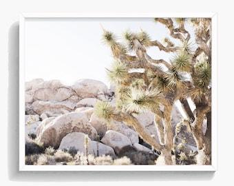 Joshua Wall Art, Desert Photography, Joshua Tree Print, South Western Decor ,Minimalist,  Large Printable Poster, Digital Download, #357