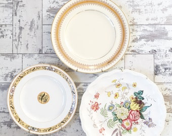 Vintage Plate Collection -Spode - Myott Birdette -  Hall - Transferware - With Plate Hangers