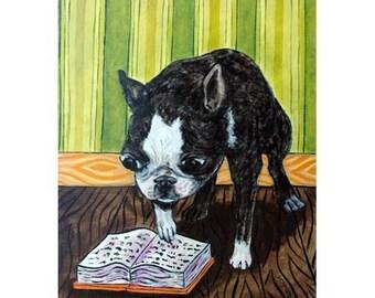 Boston Terrier Reading Dog Art Print