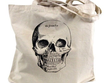 Canvas Tote  Bag - Anatomical Skull Tote Bag