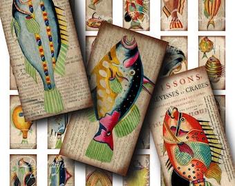 Poissons colorés (2) bizarre Collage Digital Sheet - Dominos 1 x 2 pouces ou de bambou. 75x1.5 en - créatures de la mer - Buy 3 Get 1 Extra gratuit
