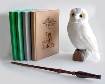 Any Four Magical Notebooks