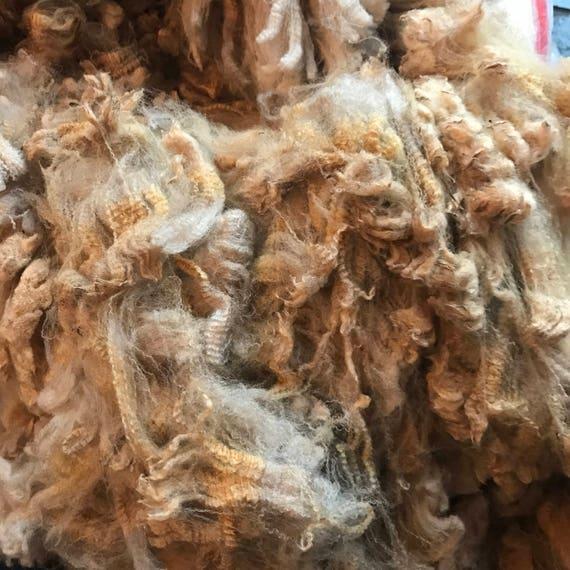 Raw Colored Merino Fleece