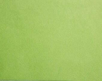 Solid Cuddle 3® Jade Shannon Fabrics Green