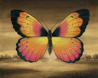 Pink and Yellow Butterfly Landscape