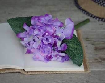 Hydrangea flower pens