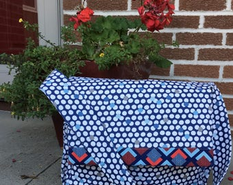 Blue and Red Messenger Bag
