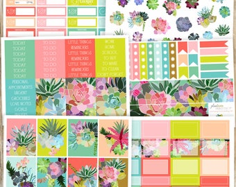Succulent Paradise Sticker Kit, 6 to 8pages, Sidebar, for use with Erin Condren Lifeplanner, Happy, Full, Checklists, Headers, Washi, Cacti
