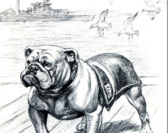 BULLDOG MILITARY 1953 Edwin Megargee Bull Dog Obedient Tough Fearless Professionally Matted Vintage Dog Print Ready to Frame Wall Art