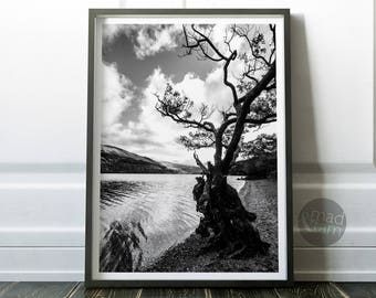 Tree Photography Wall Art, Scottish Loch Print, Printable Art, Black And White Photography, Old Tree Print, Modern Wall Art Print, Water Art