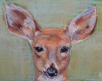 Vermont Deer