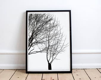 Tree Poster Forest Poster Nature Print Printable art Photography Digital Art Download Print Natural Trunk Design Black and White Zen Print