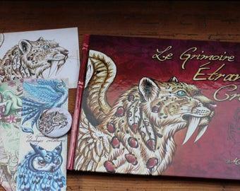 "set book ""the book of strange creatures"""