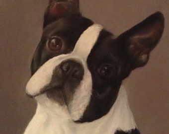 Boston Terrier Matted Print