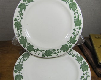 Two (2) Royal China - English Ivy Dinner Plates - Creamy White and Green