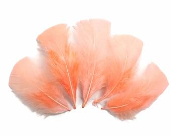 Turkey Flats, 1/4 lb - PEACH PINK Turkey T-Base Plumage Wholesale Feathers (bulk) : 4087