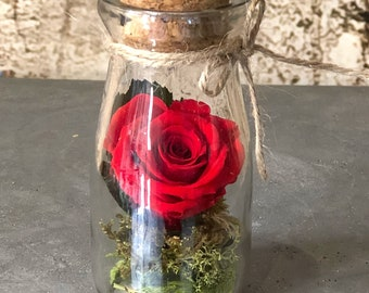 Flowers in the bottle