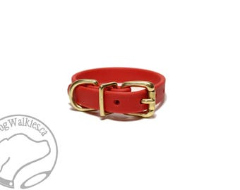 """Poppy Red Biothane Dog Collar - 5/8"""" (16mm) wide - Leather Look and Feel - Small Dog Collar - Stainless Steel or Brass Hardware Option"""