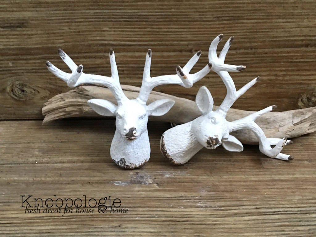 of on valuable the trophy barnwood old way to antlers pulls antler displays much drawer better