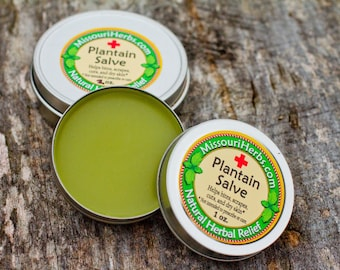 Plantain 1st Aid Salve 1 oz.