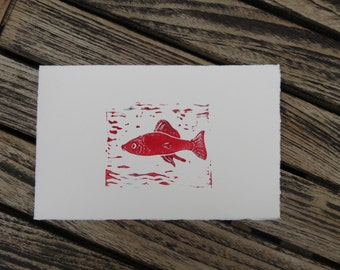 Greeting card of Red fish