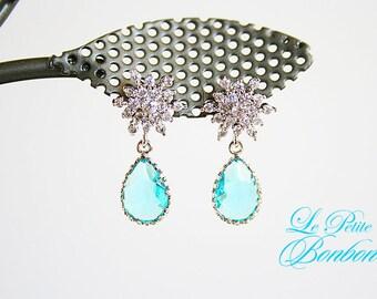 Snowflakes ice earrings