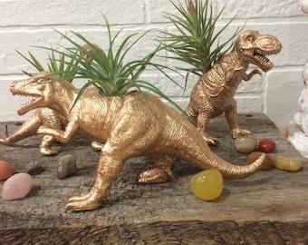 Air plants, dinosaurs, planters, home decor, Tillandsais,