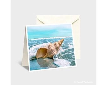 Seashell Note Card, Seashell Photo, Seashell Print, Seashell Art, Sea Shell Photo, Sea Shell Print,Sea Shell Art,Conch Shell,Conch Shell Art