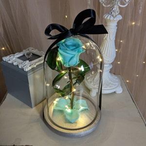 enchanted rose etsy. Black Bedroom Furniture Sets. Home Design Ideas