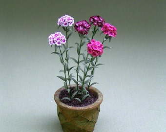 Sweet William Paper Flower Kit  for 1/12th scale Dollhouses, Florists and Miniature Gardens