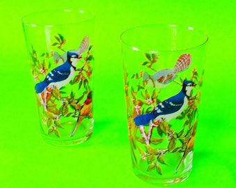 Blue Jay and Western Tanager Brightly Colored Wild Animal Birding Beauty Rockies North American Birds Clear Drinking Glasses Set of Two