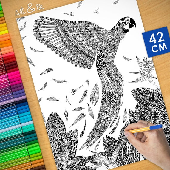 Coloring poster - MACAW P...
