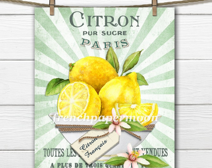 French Lemons Digital Print, Bowl Lemons, French Typography, Kitchen Print, Fabric Block, French Pillow Image