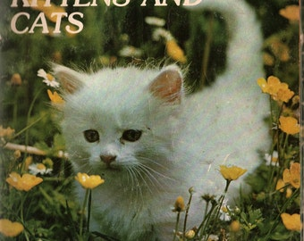 Kittens and Cats My First Animal Library + Photographic Illustrations + 1979 + Vintage Kids Book