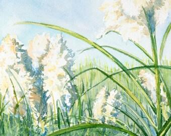 Pompous Grass Painting, Original Landscape Art, Blue Green Meadow Watercolor, Summer Nature Painting, Blue Sky Artwork, Farmhouse Wall Decor