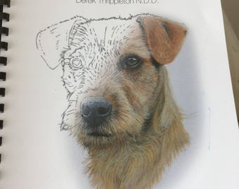 The Dogs/Cats & Horses Colouring Book