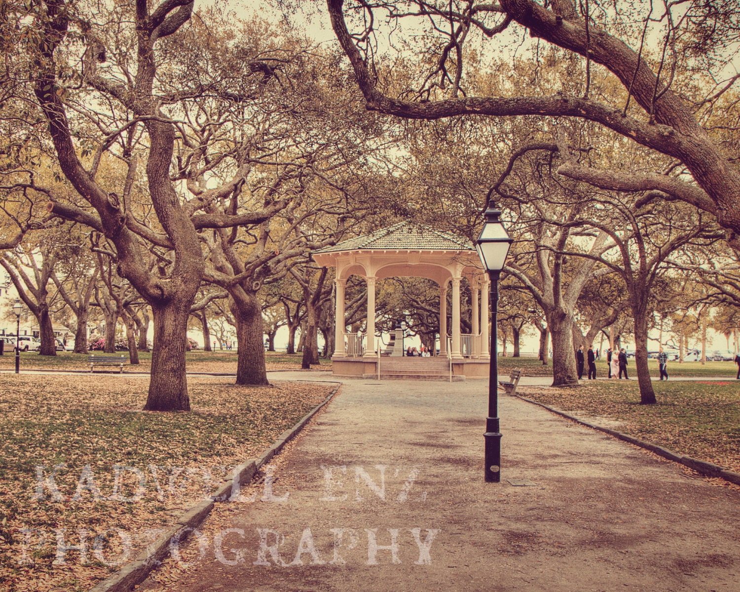 Charleston SC Battery Park in Spring Fine Art Print 8x10 11x14