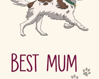 Springer Spaniel Mother's Day Card -  Best Mum Ever! -greetings card