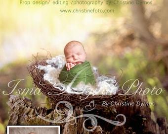 Instant download Prop Digital Newborn Photography studio ( Nest Nature ) high resolution digital file